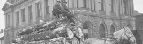 Men sitting on cut logs