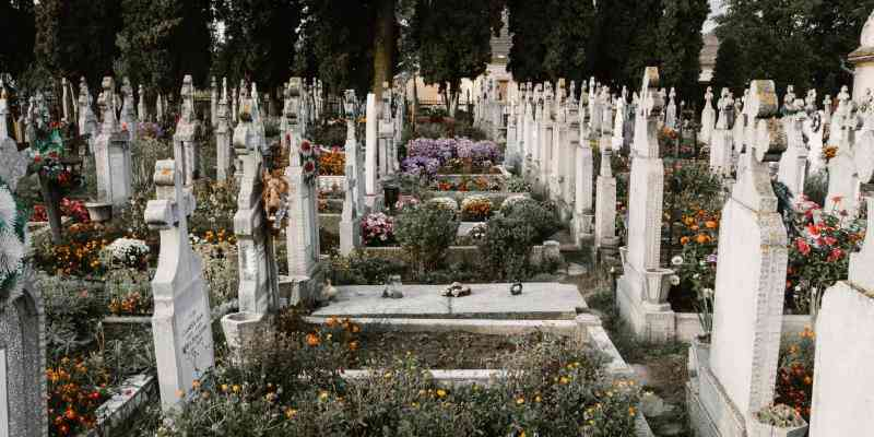 Graveyard with Flowers