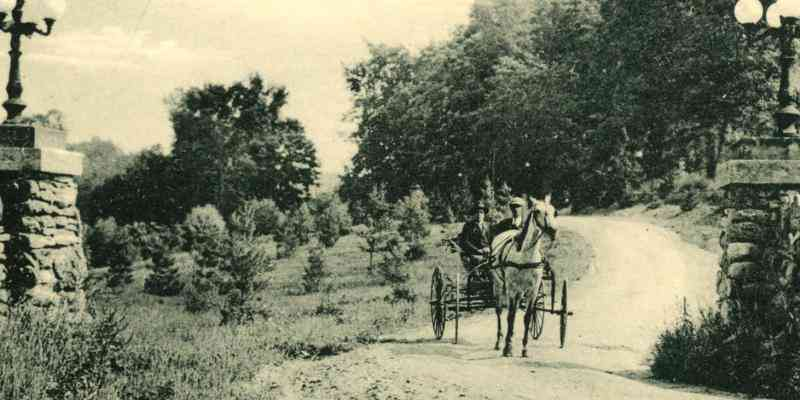 horse and buggy into Harrison Park